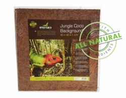 Jungle Coco Background 40x40x1cm