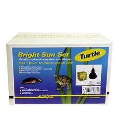 Lucky Reptile Bright Sun Set -Turtle