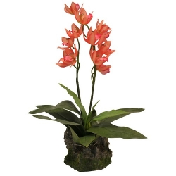 Orchidee lachsrot, groß, ca. 40 cm