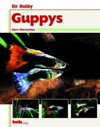 Guppys Hieronimus, Harro 80 Seiten, ca. 80-100 Fotos