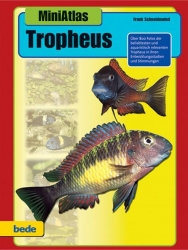 Mini Atlas Tropheus