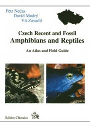 Czech Recent and Fossil Amphibians and Reptiles Necas, Modry & Zavadil 82 Seiten, 32 Farbfotos