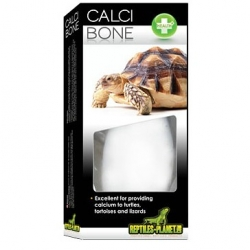 Calci Bone