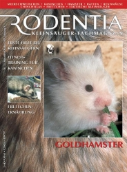 Rodentia 15, Goldhamster